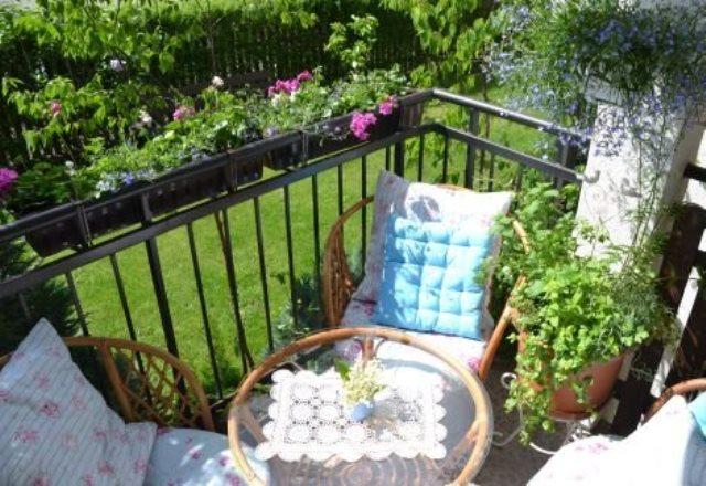 Kwiaty Zwisające Na Tarasy I Balkony Polki W Sieci