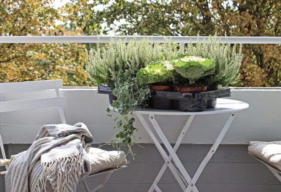 Jak urządzić balkon jesienny
